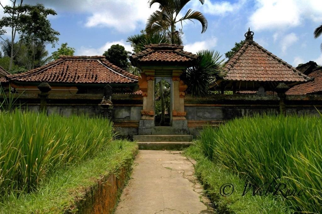 Bali – Fahrradtour